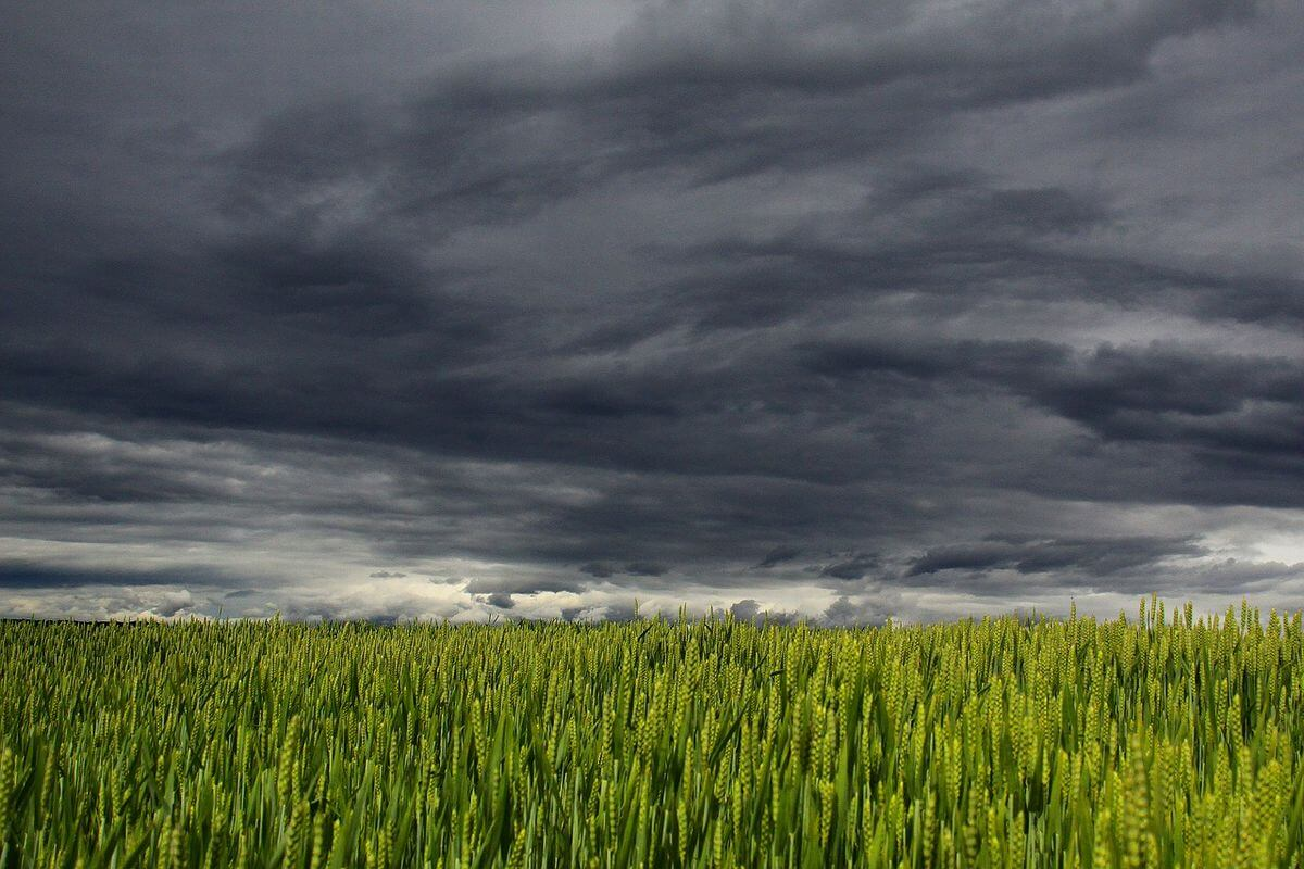 earthquake-cloud-image