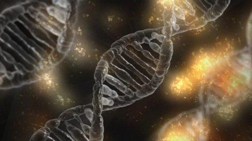 ヒトのDNAのイメージ画像