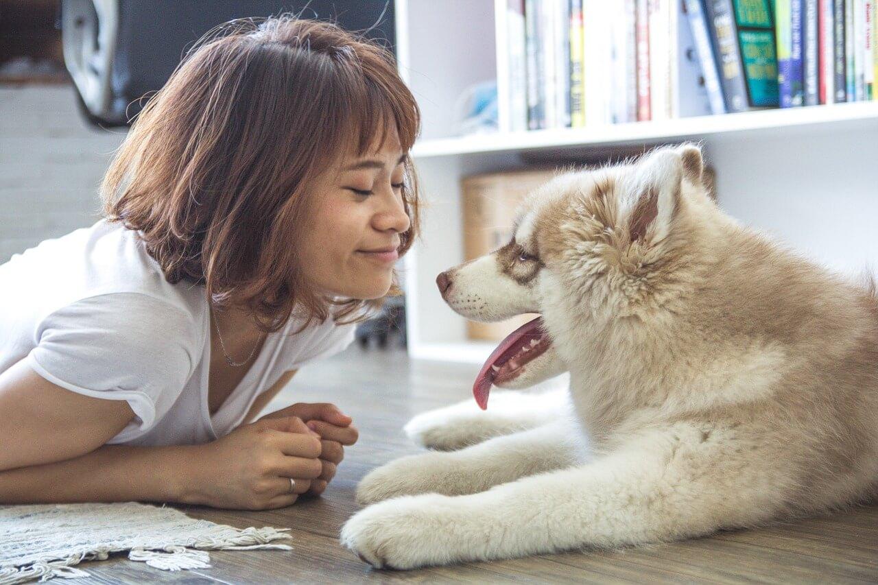 girl-and-dog-image